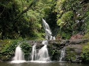 Elabana Falls is in , part of the World Heritage site in Queensland, .