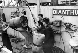 A depth charge being loaded onto a depth charge thrower on board the corvette HMS Dianthus, 14 August 1942