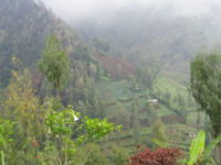 Farming in East Java in the foothills near Mount Bromo.